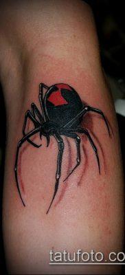 фото тату черная вдова (Tattoo) (значение) – пример рисунка – 073 tatufoto.com