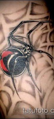 фото тату черная вдова (Tattoo) (значение) – пример рисунка – 074 tatufoto.com