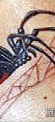 фото тату черная вдова (Tattoo) (значение) – пример рисунка – 077 tatufoto.com