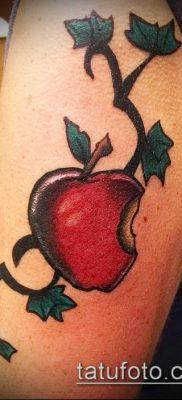фото тату яблоко (apple tattoo) (значение) – пример рисунка – 008 tatufoto.com