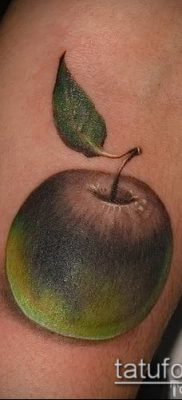 фото тату яблоко (apple tattoo) (значение) – пример рисунка – 077 tatufoto.com
