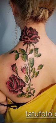 Фото Виды первой тату (tattoo) (значение) – пример рисунка – 043 tatufoto.com