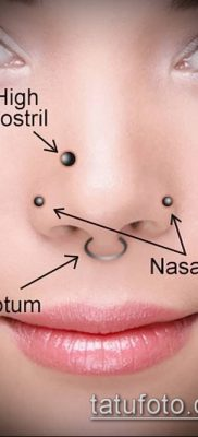 Фото Виды пирсинга (Tattoo Types of pierci) (значение) – пример рисунка – 231 tatufoto.com