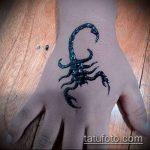 Фото скорпион хной (Tattoo Scorpion henn) (значение) - пример рисунка - 004 tatufoto.com