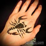 Фото скорпион хной (Tattoo Scorpion henn) (значение) - пример рисунка - 006 tatufoto.com