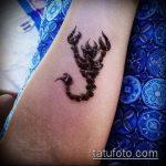 Фото скорпион хной (Tattoo Scorpion henn) (значение) - пример рисунка - 019 tatufoto.com