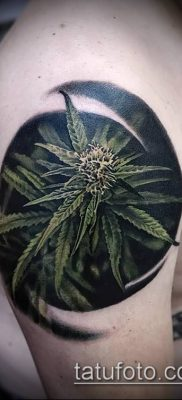 Фото тату марихуанна (Tattoo Marijuana) (значение) – пример рисунка – 015 tatufoto.com
