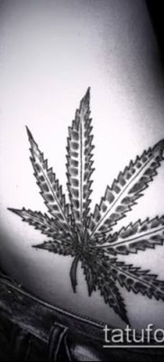 Фото тату марихуанна (Tattoo Marijuana) (значение) – пример рисунка – 095 tatufoto.com