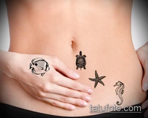 Фото тату морская звезда (Tattoo starfish) (значение) - пример рисунка - 040 tatufoto.com