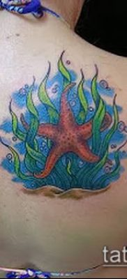 Фото тату морская звезда (Tattoo starfish) (значение) – пример рисунка – 046 tatufoto.com