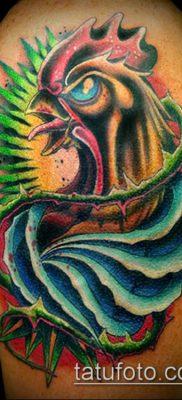 Фото тату петух (Tattoo cock) (значение) – пример рисунка – 012 tatufoto.com