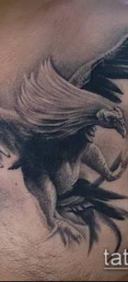 Фото тату петух (Tattoo cock) (значение) – пример рисунка – 038 tatufoto.com