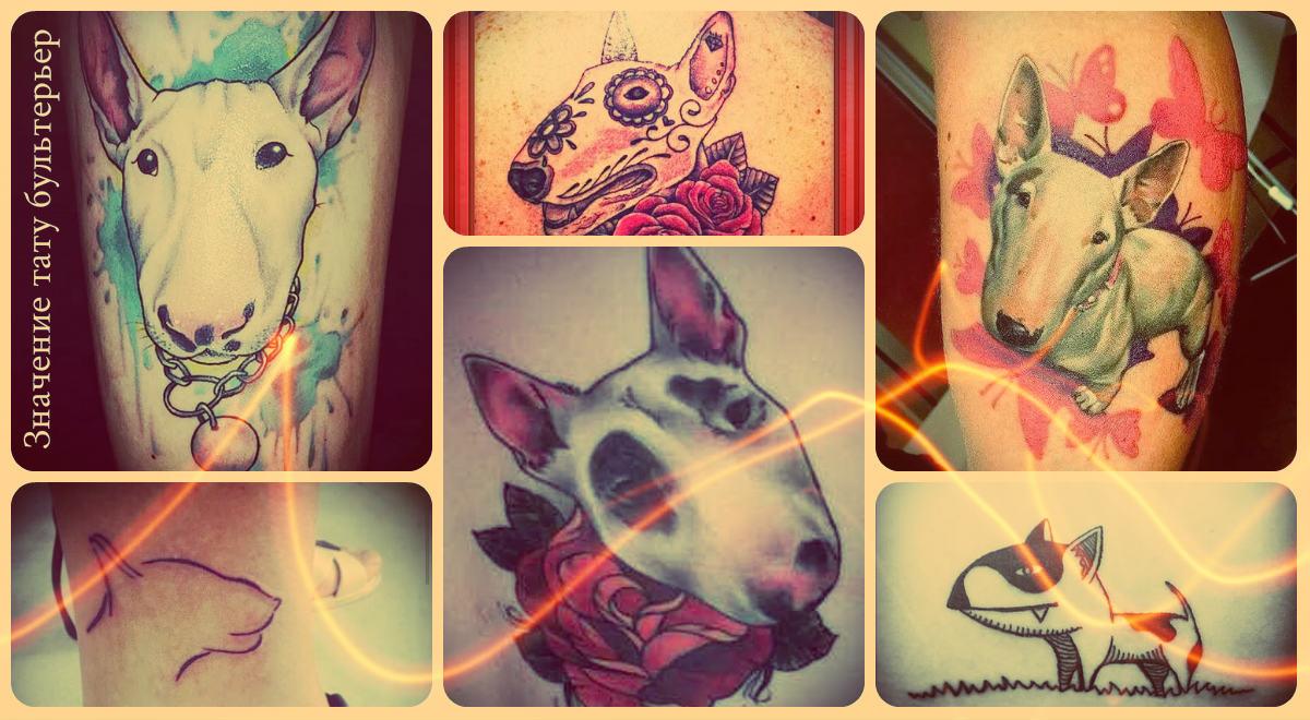 Значение тату бультерьер - фото рисунков готовых тату