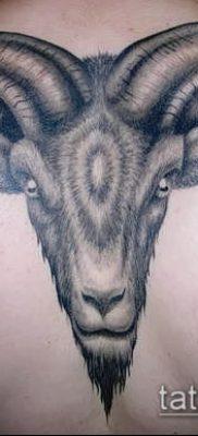 Фото тату баран – 22052017 – пример – 007 Tattoo ram