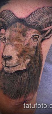 Фото тату баран – 22052017 – пример – 048 Tattoo ram