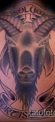 Фото тату баран – 22052017 – пример – 053 Tattoo ram