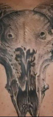 Фото тату баран – 22052017 – пример – 067 Tattoo ram