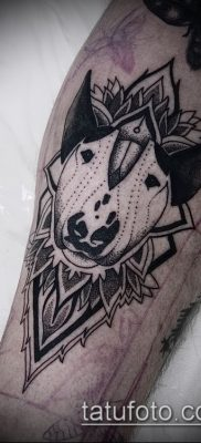 Фото тату бультерьер – 18052017 – пример – 003 Bull terrier tattoo 234234