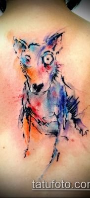 Фото тату бультерьер – 18052017 – пример – 035 Bull terrier tattoo