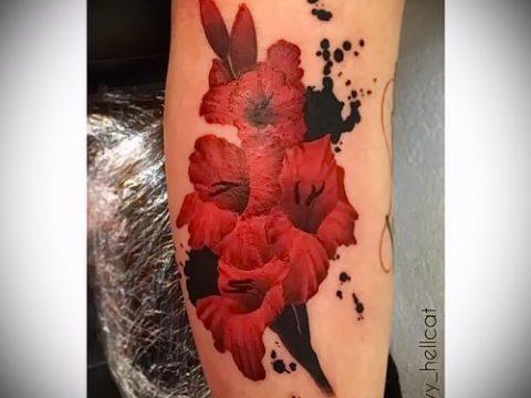Фото тату гладиолус - пример рисунка - 30052017 - пример - 045 Tattoo gladiolus