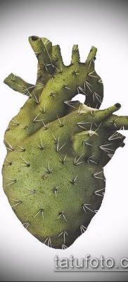 Фото тату кактус – пример рисунка – 27052017 – пример – 021 Tattoo cactus