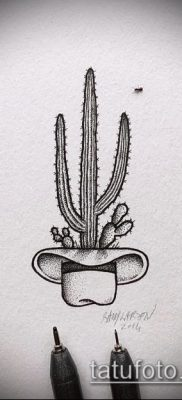 Фото тату кактус – пример рисунка – 27052017 – пример – 023 Tattoo cactus