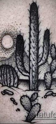Фото тату кактус – пример рисунка – 27052017 – пример – 029 Tattoo cactus