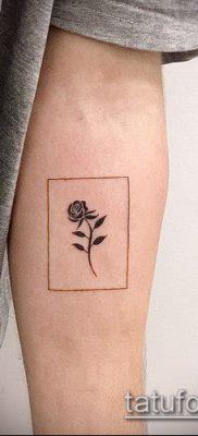 Фото тату кактус – пример рисунка – 27052017 – пример – 042 Tattoo cactus