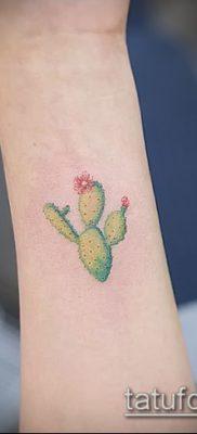 Фото тату кактус – пример рисунка – 27052017 – пример – 059 Tattoo cactus