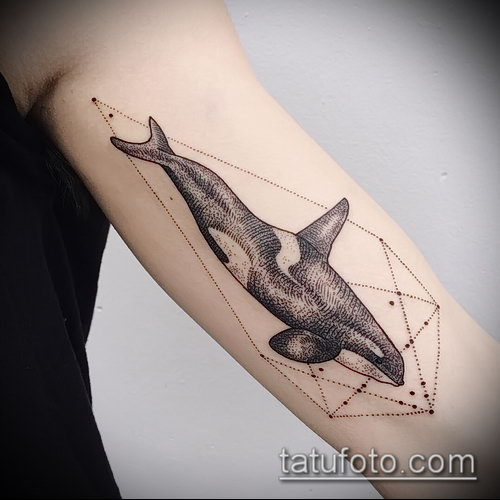 Татуировка касатка: значение, символика