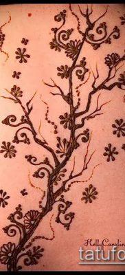 Фото тату рисунки хной (tattoo of henna) (значение) — пример рисунка — 042 tatufoto.com
