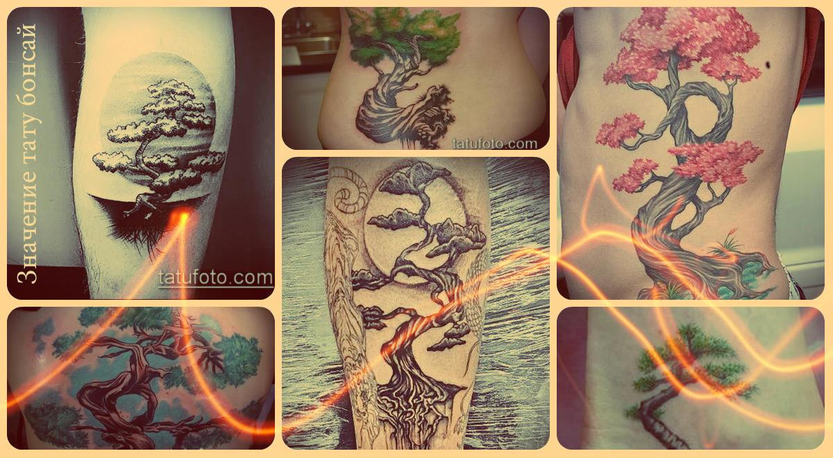 Значение тату бонсай - варианты оригинальных татуировок на фото