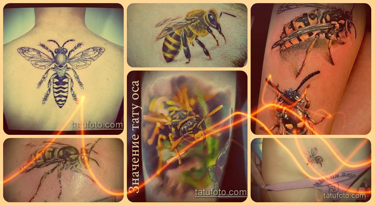 Значение тату оса - примеры готовых тату на фото