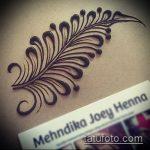 Фото Мехенди перо - 05062017 - пример - 021 Mehendi Feather