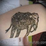 Фото Мехенди слон - 04062017 - пример - 037 Mehendi Elephant
