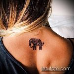 Фото Мехенди слон - 04062017 - пример - 044 Mehendi Elephant
