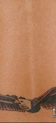 Фото Тату со значением свобода – 01062017 – пример – 068 Freedom tattoo