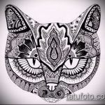 Фото кошка хной - мехенди - 12062017 - пример - 004 Cat henna - mehendi