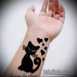Фото кошка хной - мехенди - 12062017 - пример - 009 Cat henna - mehendi