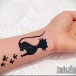 Фото кошка хной - мехенди - 12062017 - пример - 036 Cat henna - mehendi