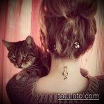 Фото кошка хной - мехенди - 12062017 - пример - 037 Cat henna - mehendi