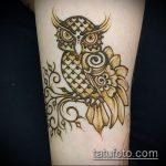 Фото рисунок совы хной мехенди - 04062017 - пример - 013 owl henna