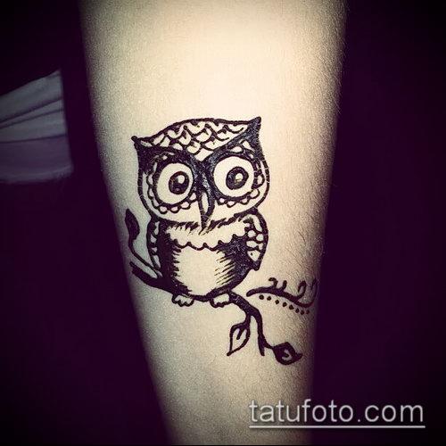 Фото рисунок совы хной мехенди - 04062017 - пример - 017 owl henna