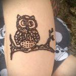 Фото рисунок совы хной мехенди - 04062017 - пример - 030 owl henna