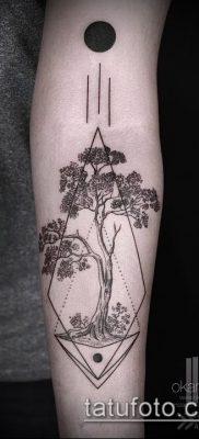 Фото тату бонсай – 19062017 – пример – 003 Bonsai tattoo – tatufoto.com
