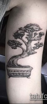 Фото тату бонсай – 19062017 – пример – 004 Bonsai tattoo – tatufoto.com