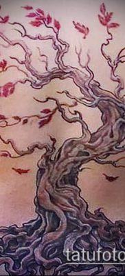 Фото тату бонсай – 19062017 – пример – 023 Bonsai tattoo – tatufoto.com