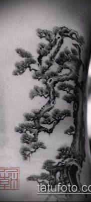Фото тату бонсай – 19062017 – пример – 029 Bonsai tattoo – tatufoto.com