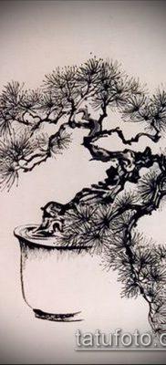 Фото тату бонсай – 19062017 – пример – 038 Bonsai tattoo – tatufoto.com