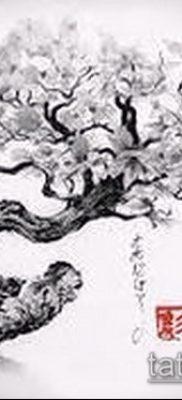 Фото тату бонсай – 19062017 – пример – 043 Bonsai tattoo – tatufoto.com